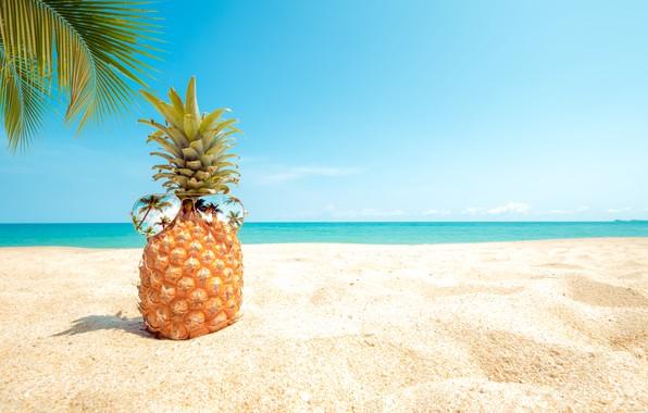 Картинка песок, море, пляж, лето, небо, пальмы, отдых, берег, очки, summer, ананас, beach, каникулы, sea, seascape, …
