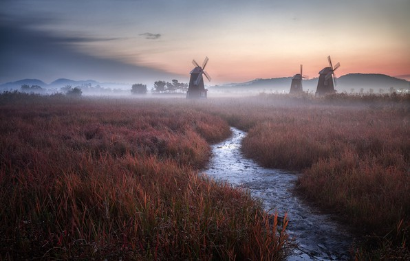 Картинка grass, twilight, Holland, sky, field, landscape, nature, sunset, clouds, evening, fog, Netherlands, stream, mist, windmills