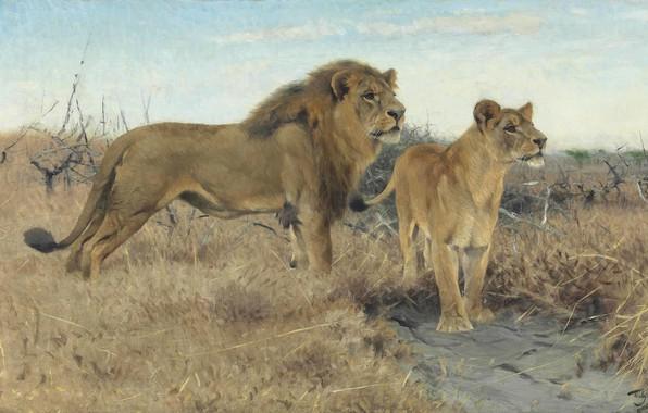Картинка 1922, German painter, Фридрих Вильгельм Кунерт, немецкий живописец, Friedrich Wilhelm Kuhnert, Львы на равнинах Африки, ...