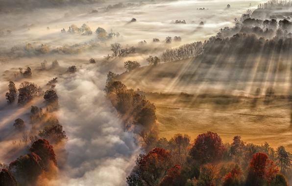 Картинка осень, лучи, свет, туман, река, пар
