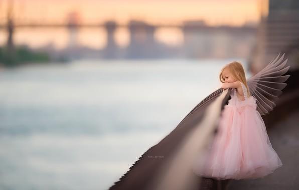 Картинка крылья, ангел, девочка