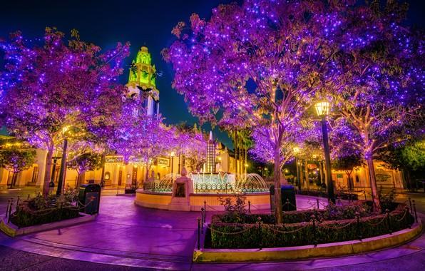 Картинка природа, город, парк, ночные огни, красота, фантан