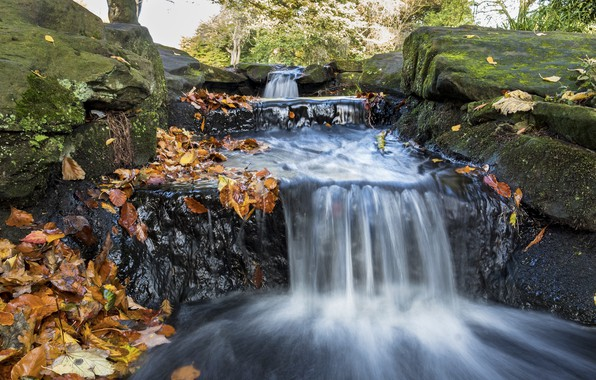 Картинка осень, листья, природа, камни, водопад