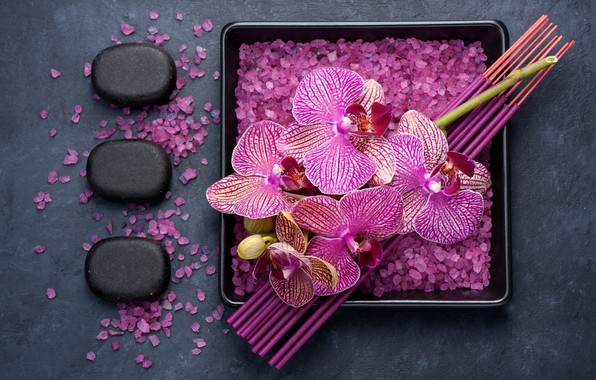 Картинка цветы, ветка, орхидея, морская соль