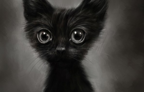 Картинка котенок, рисунок, смешной, by Lusidus