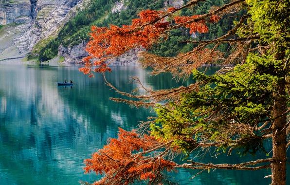 Картинка осень, озеро, дерево, лодка, Швейцария, рыбаки, Switzerland, озеро Эшинензе, Oeschinen Lake, Бернское высокогорье, Bernese Oberland, …