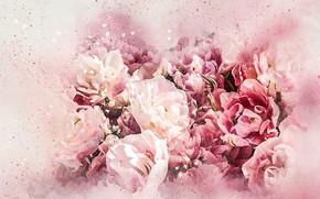 Картинка цветы, букет, картина, акварель