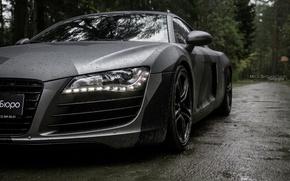 Картинка car, машина, авто, лес, туман, дождь, ауди, audi, гонка, бэтмен, тачка, спорт кар, камуфляж, автомобиль, …
