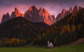 Картинка лес, свет, горы, Альпы, церковь