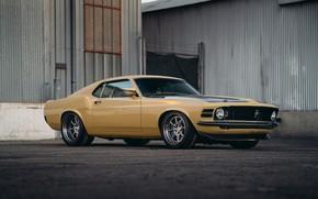 Картинка Mustang, Ford, Speed, Performance, Kore