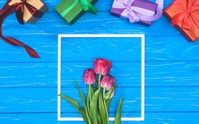Картинка подарок, тюльпаны, Праздник