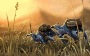 Картинка трава, птицы, Wanderers