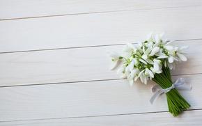 Обои подснежники, букет, цветы, лента, весна