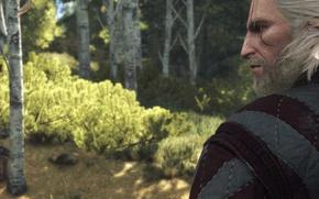 Картинка Взгляд, Ведьмак, Геральт, Witcher 3, Скриншот