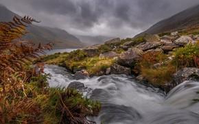 Картинка трава, облака, горы, туман, река, ручей, камни, склон
