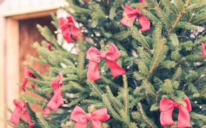 Картинка праздник, ёлка, бантики