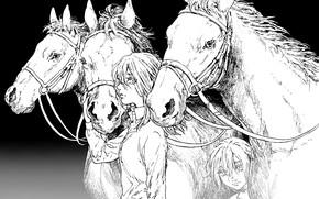 Картинка girl, game, long hair, woman, anime, horses, animal, horse, asian, manga, japanese, oriental, asiatic, Attack …