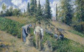 Картинка пейзаж, картина, жанровая, Камиль Писсарро, Уборка Урожая. Понтуаз