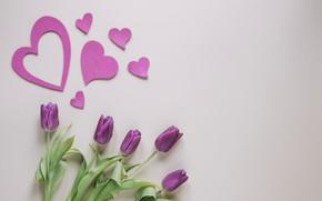Картинка цветы, Тюльпаны, сердечки