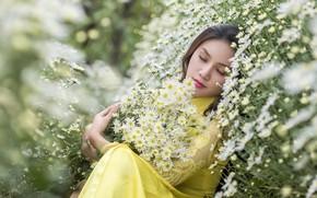 Обои природа, девушка, цветы