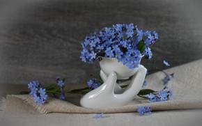 Картинка цветы, букет цветов, мешковина, незабудки, голубые цветы, фарфор, минибукет, маленький букет, мелкие цветы