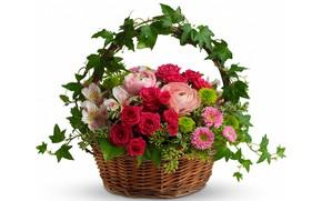 Обои белый фон, лилии, букет, хризантемы, корзина, розы, листья