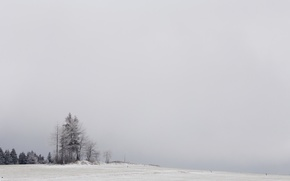 Картинка зима, поле, снег, деревья, природа, туман