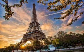 Обои spring, Франция, Париж, France, cityscape, blossom, Paris, Eiffel Tower, весна