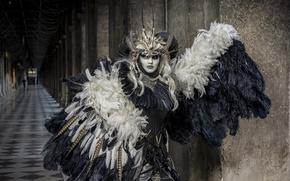 Картинка перья, маска, костюм, карнавал