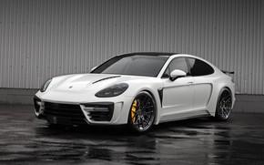 Картинка фон, Porsche, Panamera, GTR, порше, панамера, TopCar