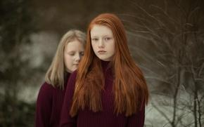 Картинка взгляд, девочки, рыжеволосая, сёстры