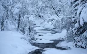 Картинка зима, лес, снег, река, полынья, стремнина