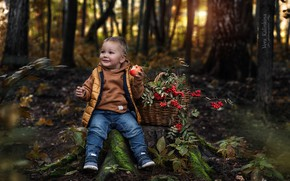 Картинка лес, улыбка, корзина, яблоко, мальчик, рябина