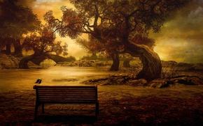 Обои река, деревья, скамейка, птица, мост, осень