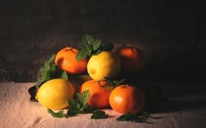 Картинка цитрусы, лимоны, мандарины