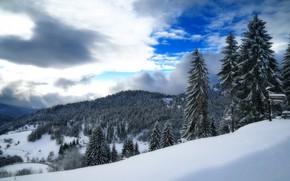 Обои зима, небо, снег, горы, Германия, ели, долина, Germany, Баден-Вюртемберг, Baden-Württemberg, Black Forest, Шварцвальд
