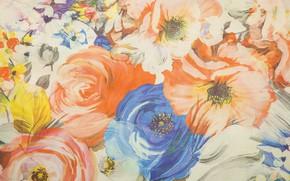 Обои цветы, текстура, ткань