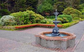 Картинка зелень, деревья, цветы, парк, дорожки, фонтан, кусты, лавочки