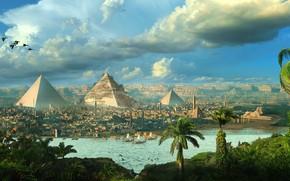 Картинка птицы, город, пальмы, пирамиды, Egypt