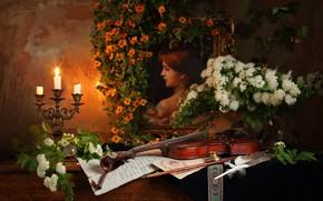 Картинка цветы, скрипка, свеча, картина, натюрморт