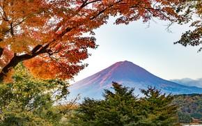 Картинка осень, деревья, гора, вулкан