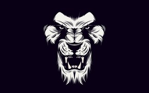 Картинка White, lion, black
