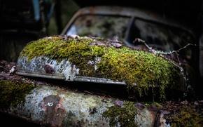 Картинка мох, Volvo, Volvo PV, требуется ремонт