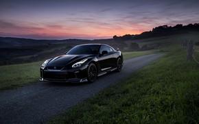 Обои дорога, поле, авто, вечер, Nissan, GT-R