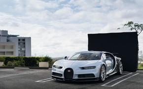 Картинка bugatti, supercar, chiron