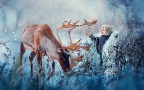 Обои зима, снег, радость, природа, животное, мальчик, олень, колокольчики, ребёнок