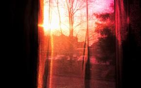 Обои небо, солнце, деревья, счастье, закат, настроение, розовый, весна