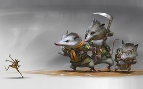 Картинка лягушка, арт, крыса, Illustrator, скаут, Rudy Siswanto, Scout Brother
