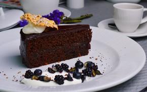 Картинка ягоды, шоколад, торт, василек