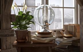 Картинка цветок, лампа, окно, башмаки, BY THE WINDOW